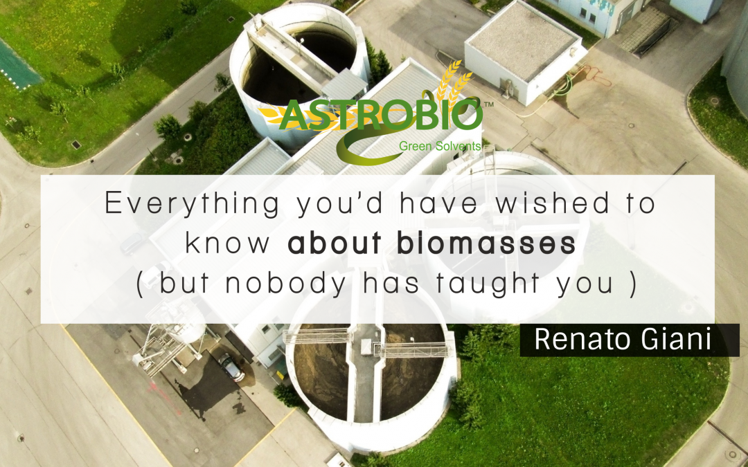 Everything You'd Have Wished To Know About Biomasses